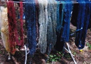 One day's work for the Natural Dyeing Group