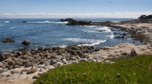 Ocean view at Asilomar Conference Grounds