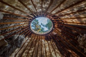 Inside the Fibershed Yurt looking out. photo by Kalie Cassel-Feisst